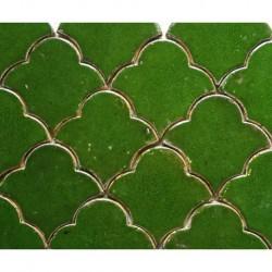 Vitis mosaic