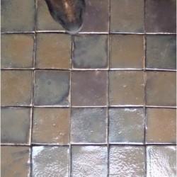 kafle Lusia-owczarek niemiecki